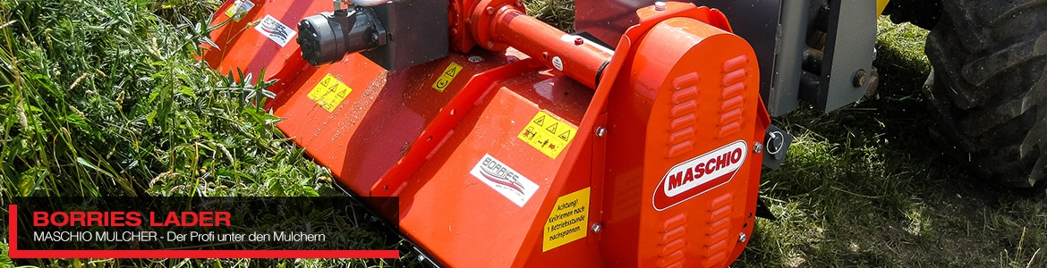 Maschio Mulcher von Borries Lader in Erftstadt